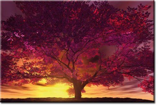 fototapety drzewo w zachodzie słońca