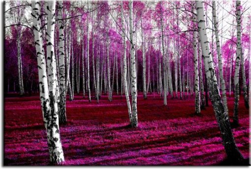 obraz las brzozowy