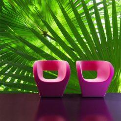 liście palmy fototapeta