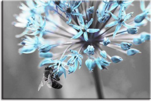 tapeta niebieskie kwiaty