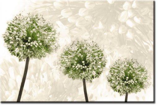 fototapety z roślinami