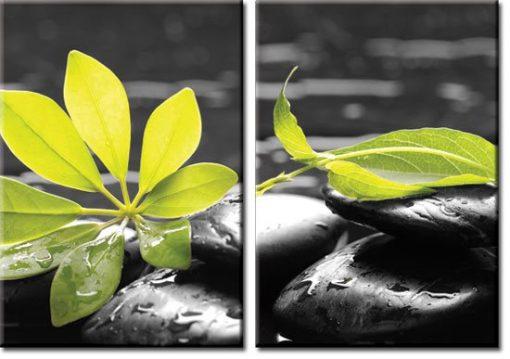 dwa obrazy z roślinami