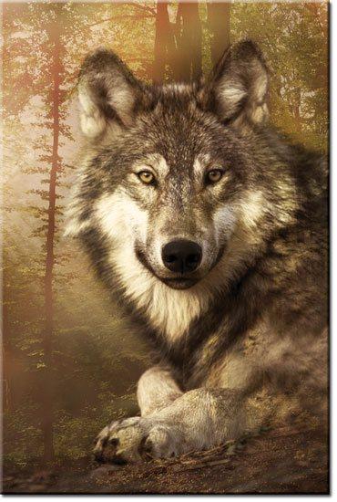 dekoracje z wilkiem