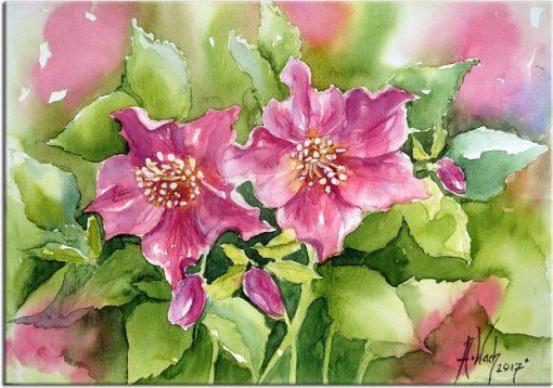 obraz z akwarelą kwiaty ciemiernika