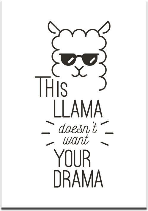 lama w okularach na plakacie
