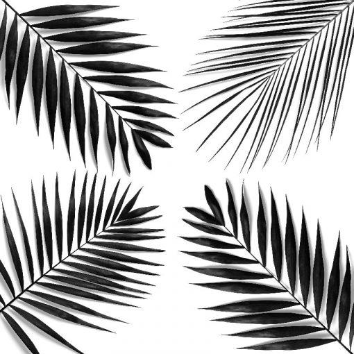 kwadratowa tapeta z palmami