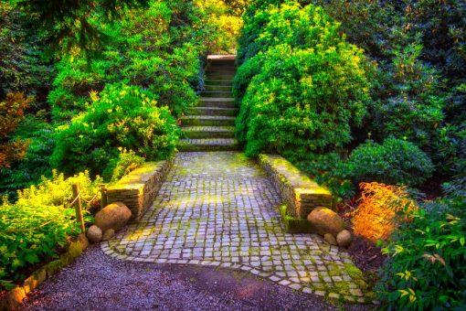 kolorowa fototapeta z drogą i schodami