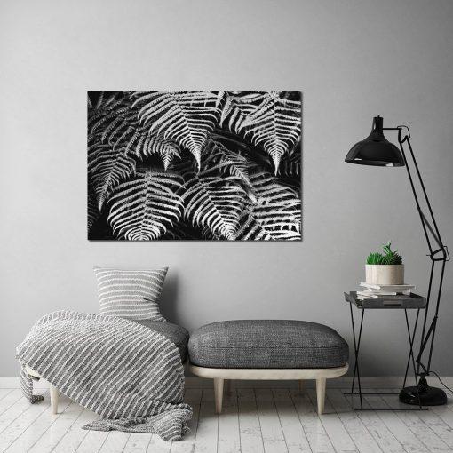 plakat czarno-biały z paprotką
