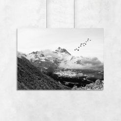 ptaki i górski krajobraz