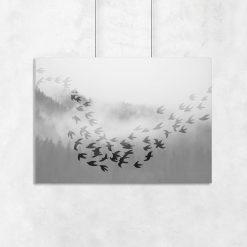 plakat z ptaszkami na tle lasu