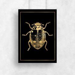 plakat ze złotym żukiem