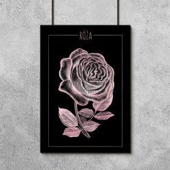 plakaty z różą