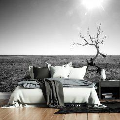 Fototapeta z krajobrazem pustyni