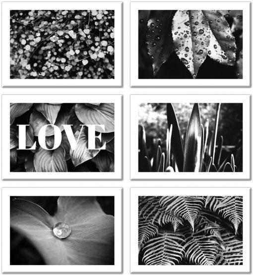 Zestaw sześciu plakatów z liściastym motywem