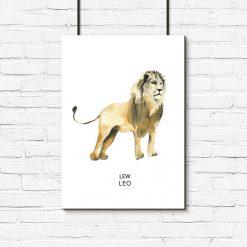 lew jako motyw plakatu