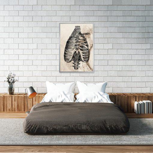 Plakat anatomiczny do sypialni
