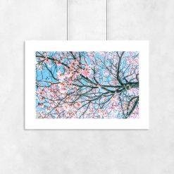 Plakat różowe kwiaty na niebieskim tle