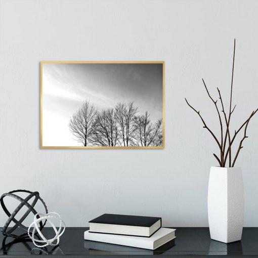 Plakat z drzewami