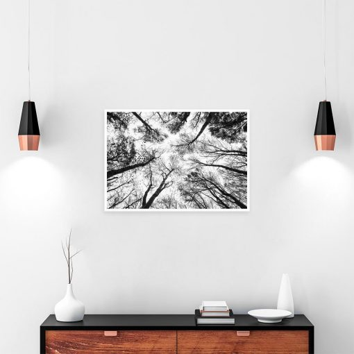 Czarno-biały plakat drzewa