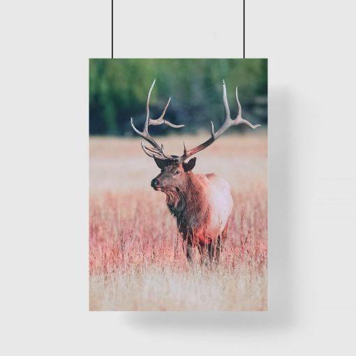 Plakat z jeleniem w odcieniach czerwieni
