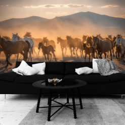 Fototapeta z motywem koni