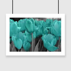 Plakat turkusowe tulipany