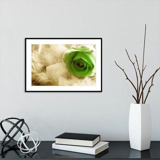 Plakat z motywem piórek i róży