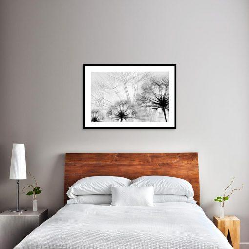 Plakat czarno-biały z dmuchawcami