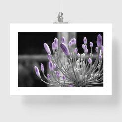Plakat z motywem rośliny