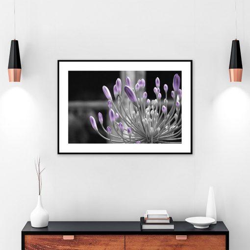 Plakat fioletowy z rośliną