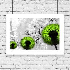 Plakat zielone dmuchawce na ścianę