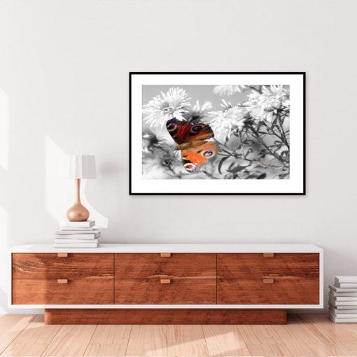 Plakat z motylkiem i kwiatami na ścianę w salonie