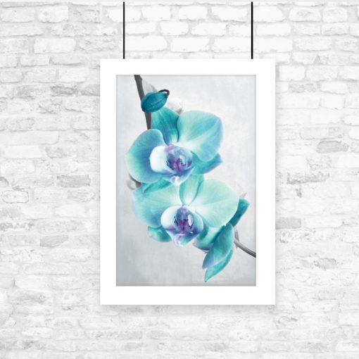 plakat z kwiatami na ścianę