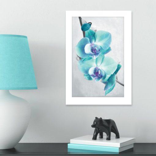 plakat z niebieskimi storczykami na ścianie