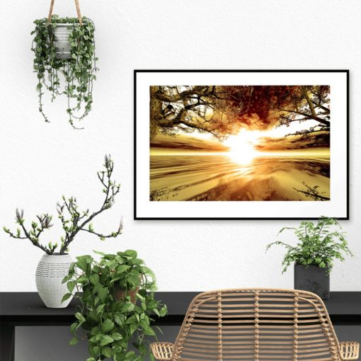 plakat z drzewami i zachodem słońca