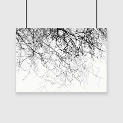 plakat z czarnymi gałęziami na ścianę