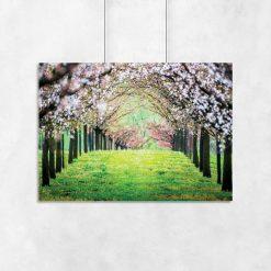 plakat z motywem drzew na ścianie