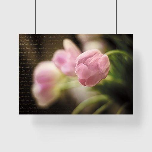 plakat z tulipanami na ścianę
