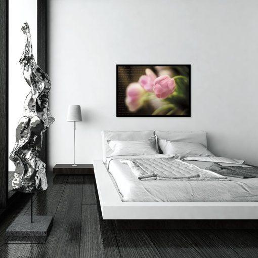 plakat różowe tulipany na ścianę