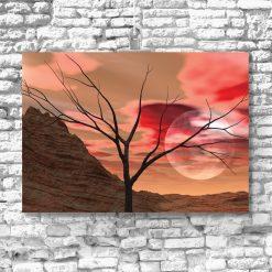 Plakat czerwona pustynia