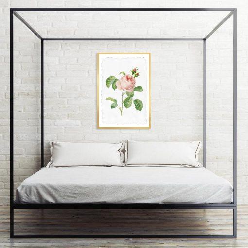 plakat w kwiat róży do sypialni