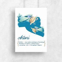 plakat z genezą imienia Antoni