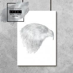 plakat srebrny z orłem