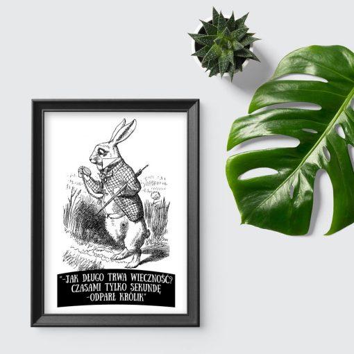 plakat królik i cytat