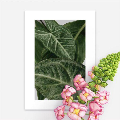 plakat z roślinnością