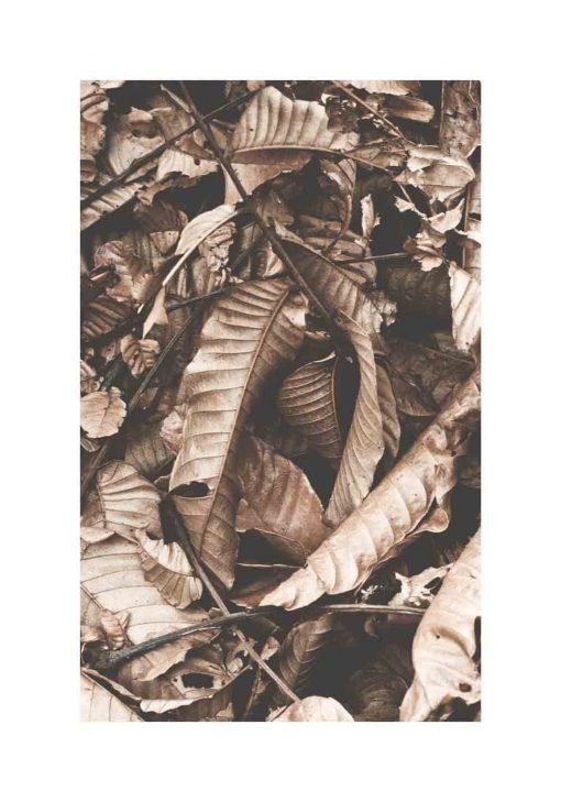 Jesienne liście na plakacie