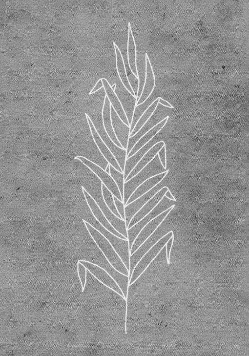 plakat z białą rośliną na szarym tle