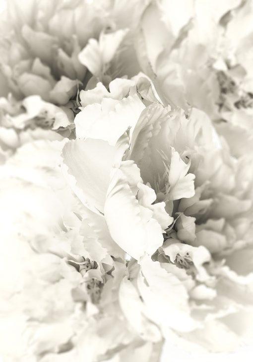 plakat w ramie z jasnymi kwiatami