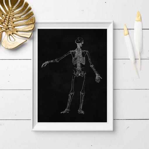 Plakat dla fizjoterapeuty ze szkieletem