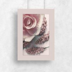 Plakat - Róża na tle wrzosu do salonu